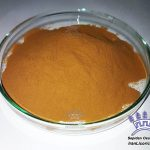 licorice extract powder herbal herbs